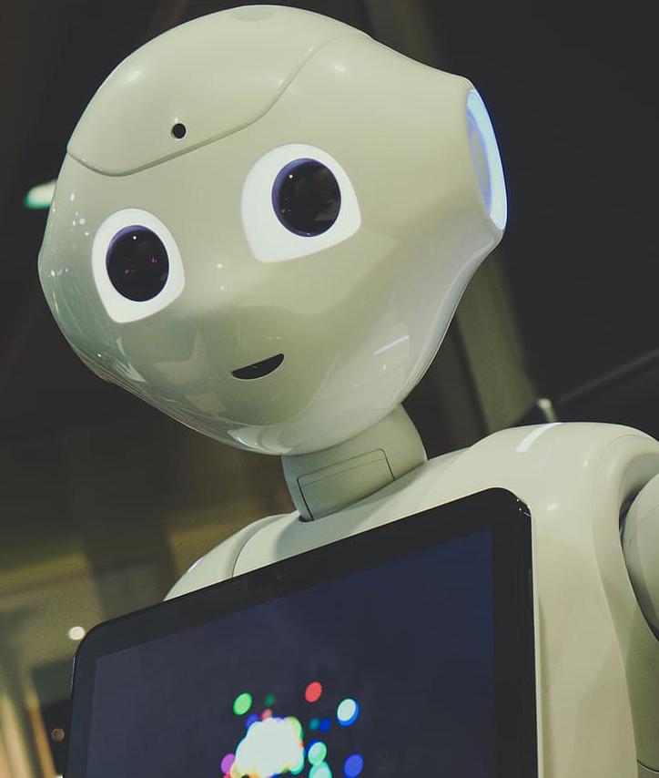 RoboDoc: The Future is Smart
